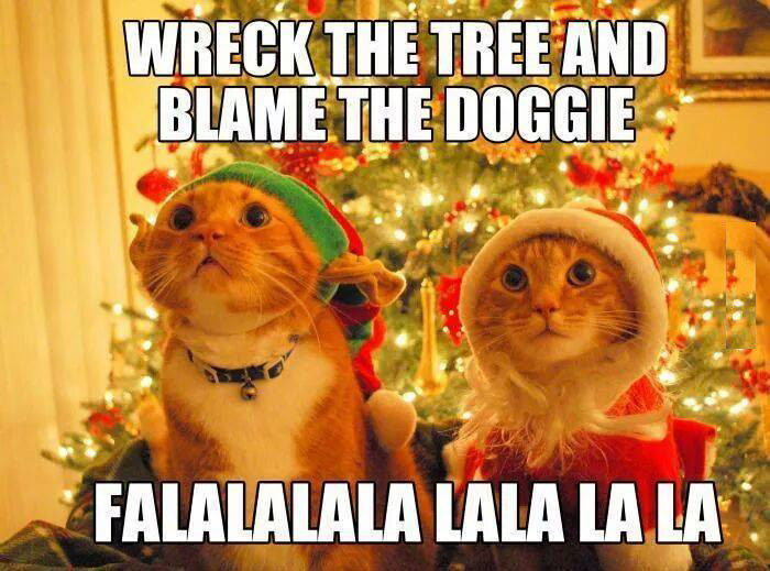 Cat-Wrecks-Christmas-tree
